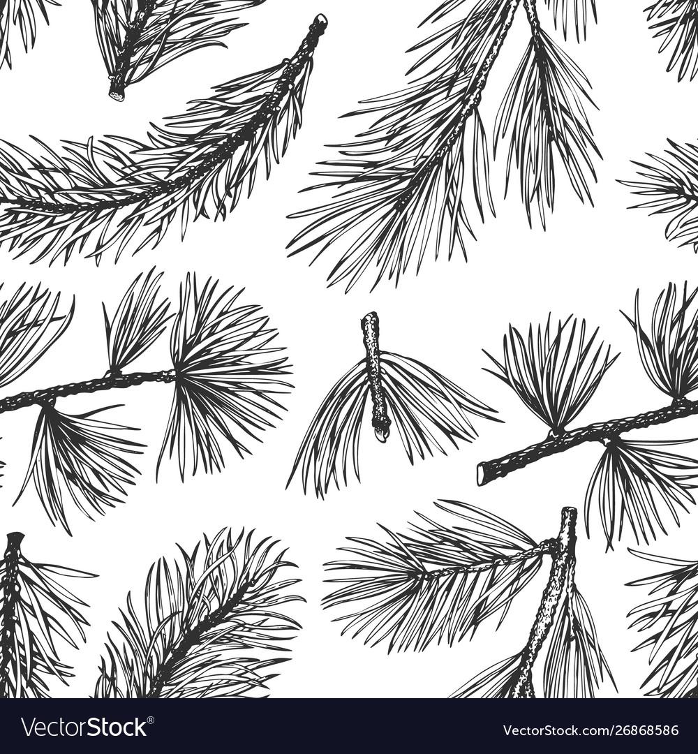 Pine needles hand drawn seamless pattern vintage