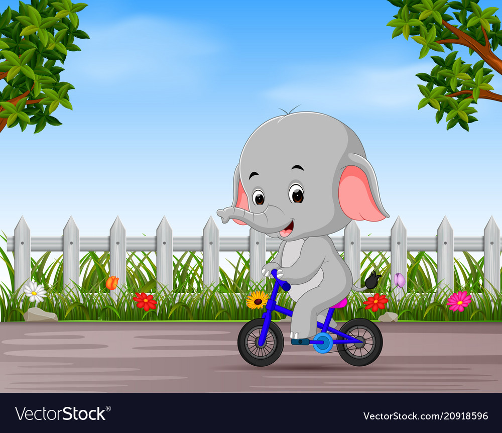 Funny elephant cycling in the road