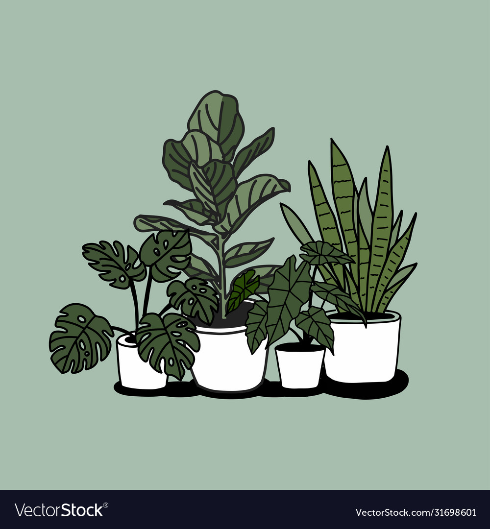 Houseplant in pot hand draw sketch
