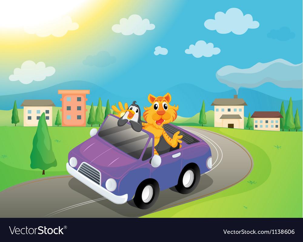 Animals in car