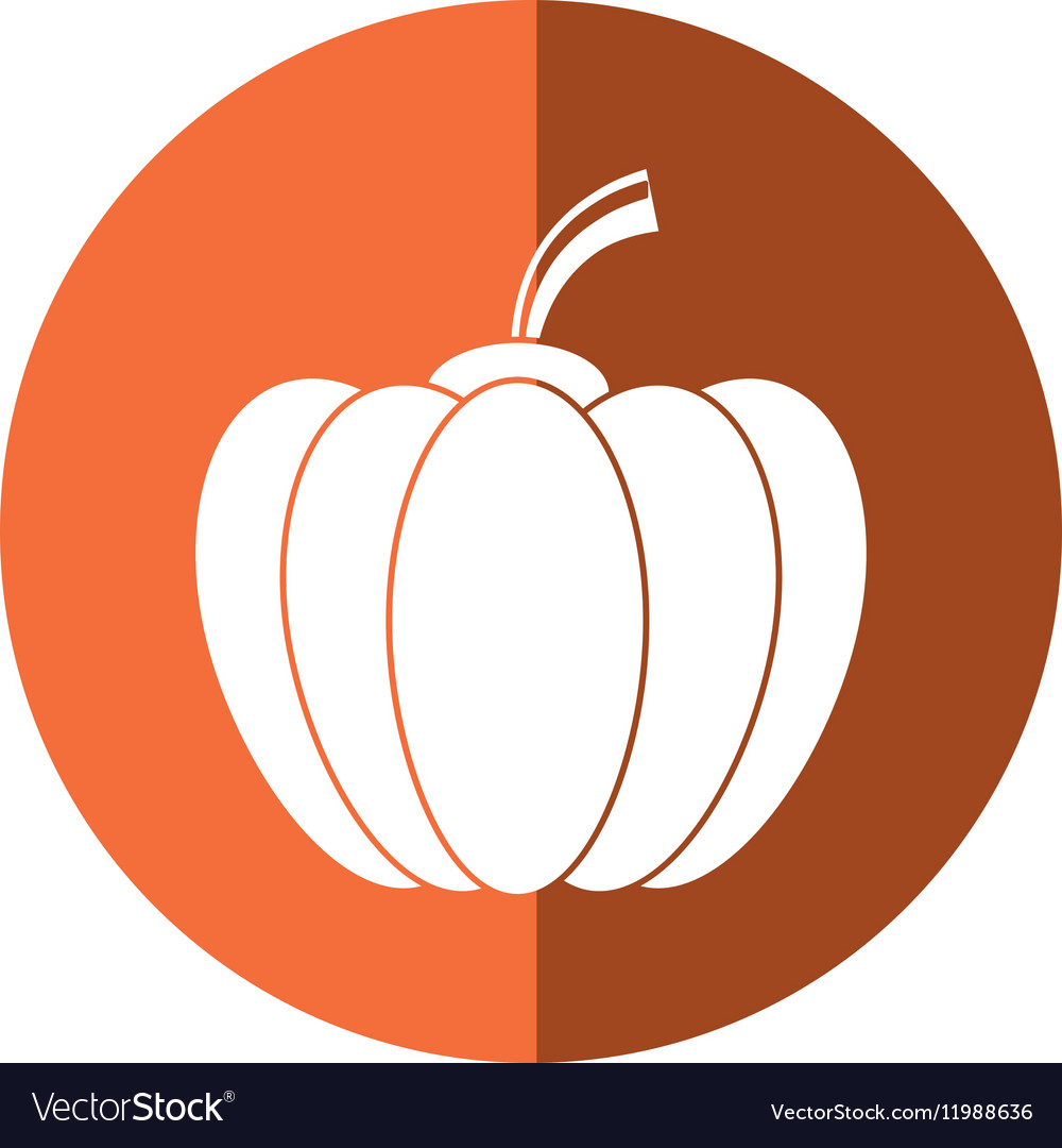 Pumpkin harvest bittersweet vegetable icon orange vector image