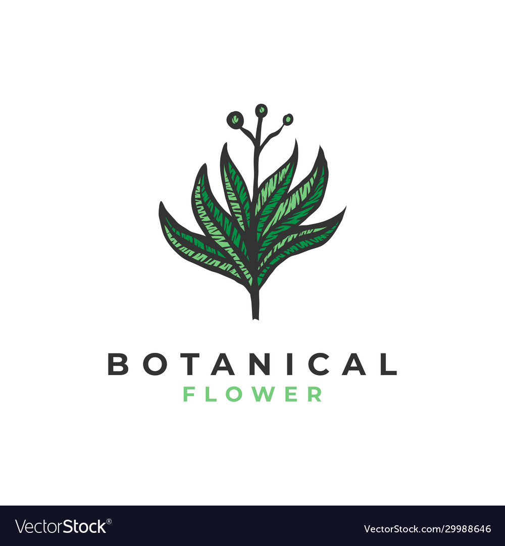 Botanical flower logo template