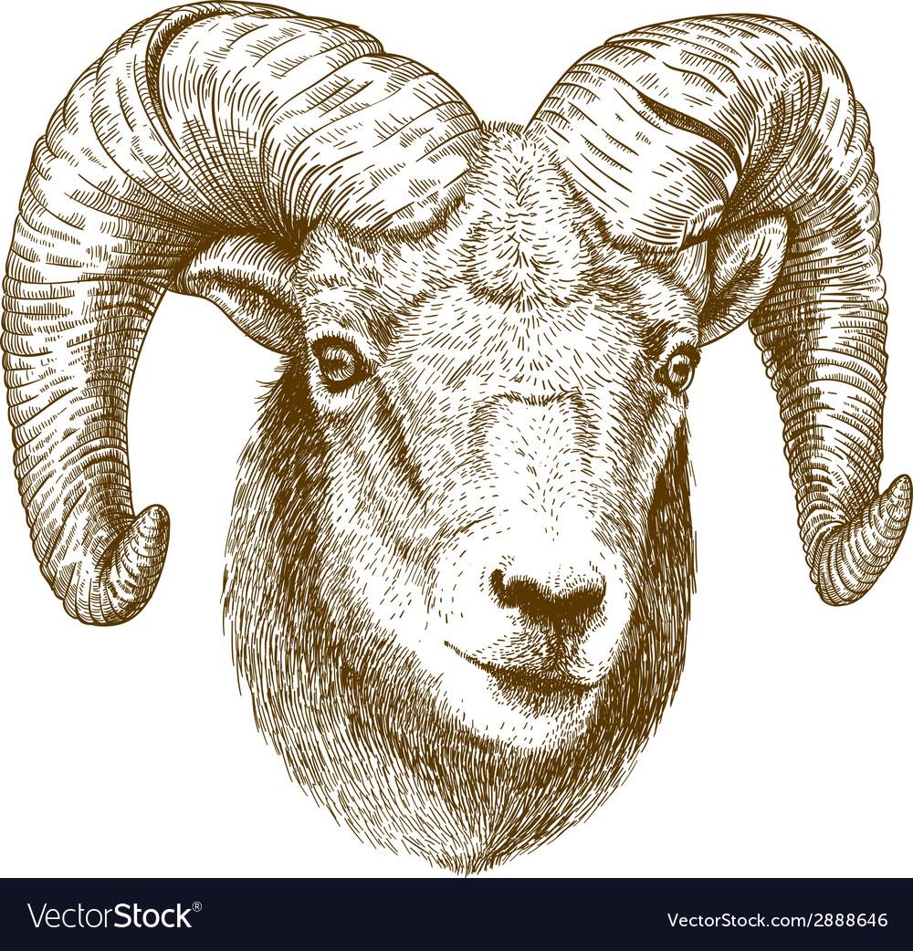 Engraving ram head