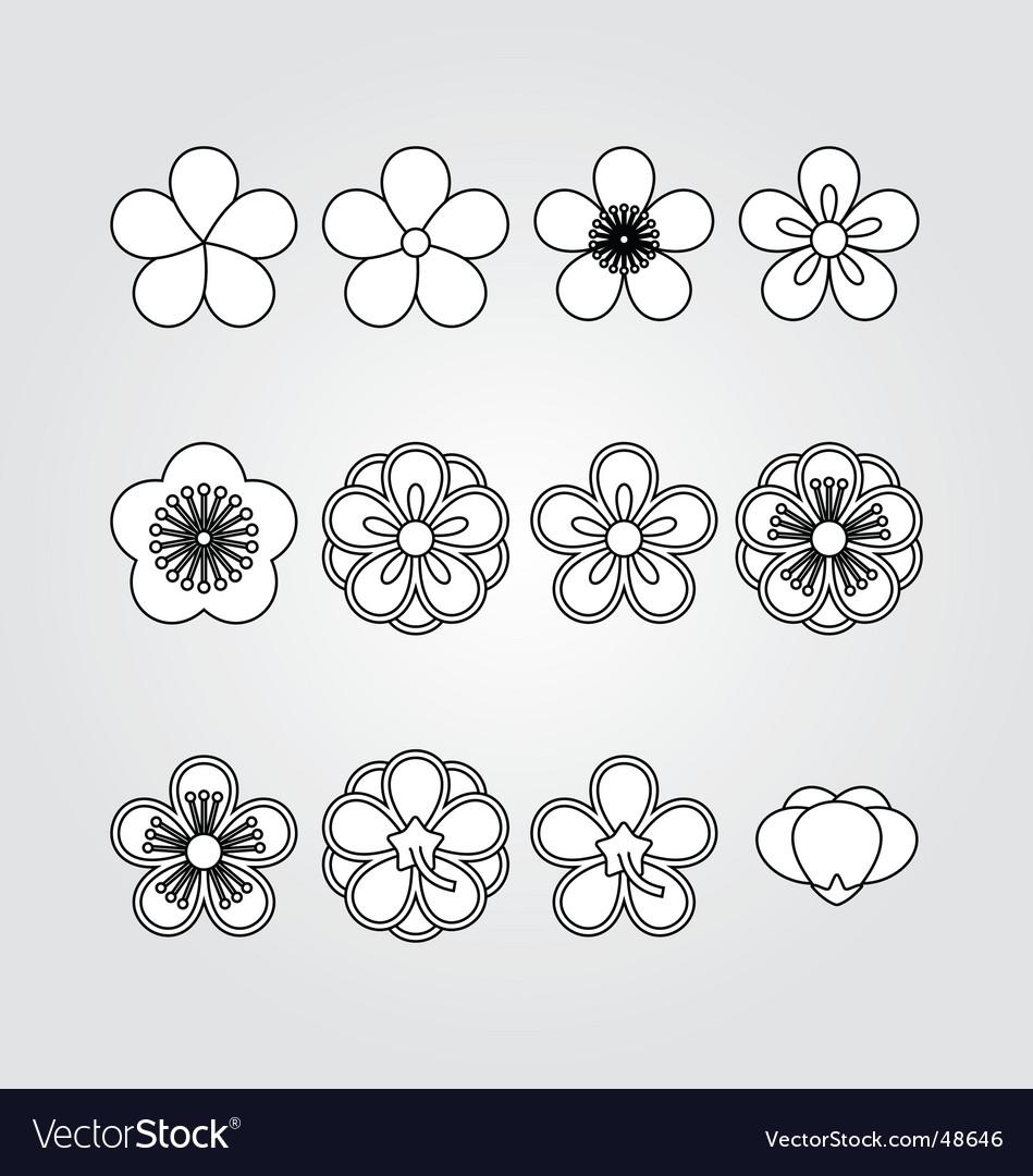 Flower kit set