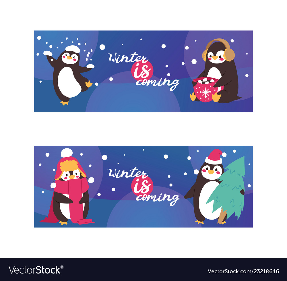 Penguin animal in scarf and ear muffs in winter