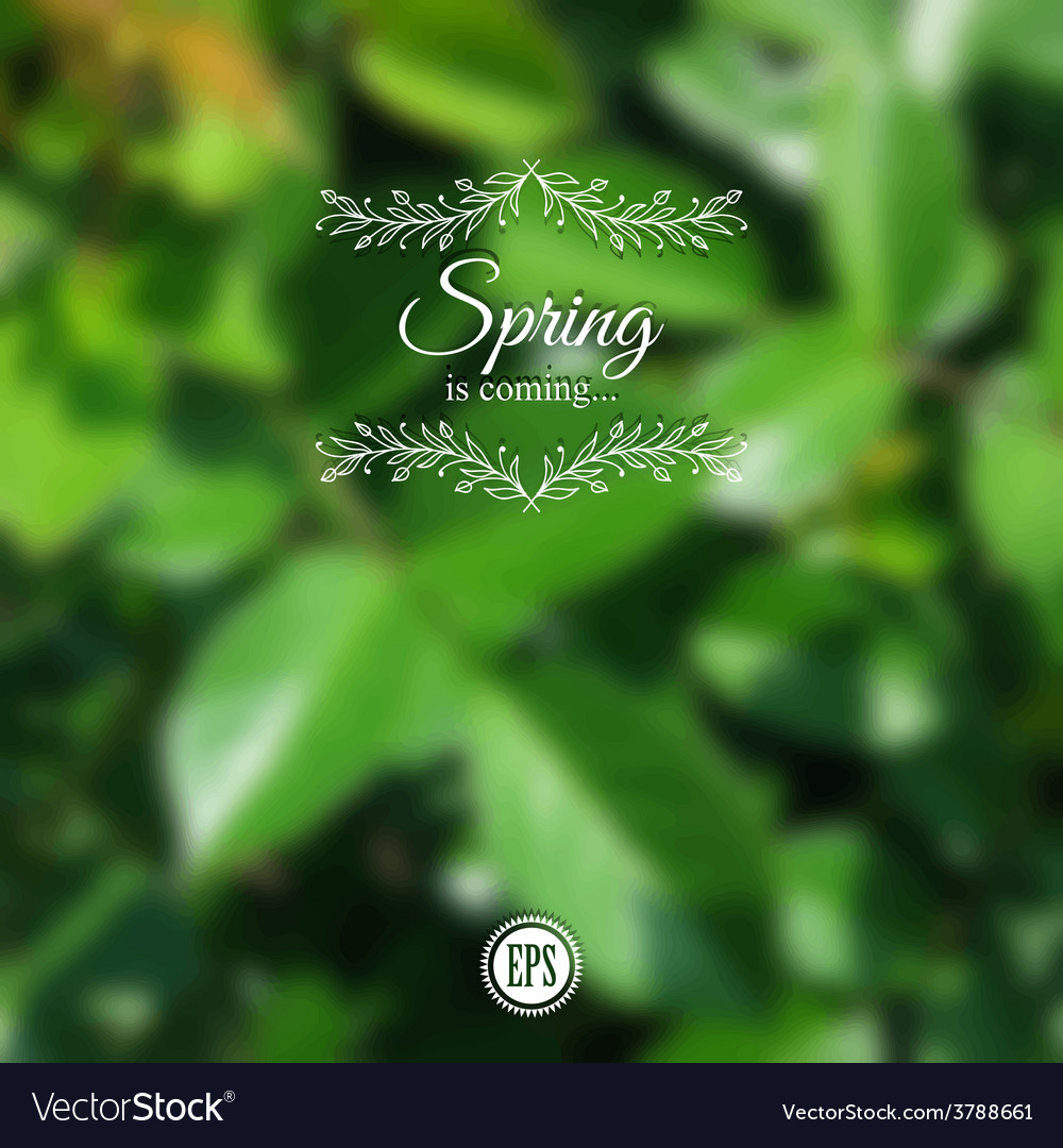 Blurred spring background with branch and green