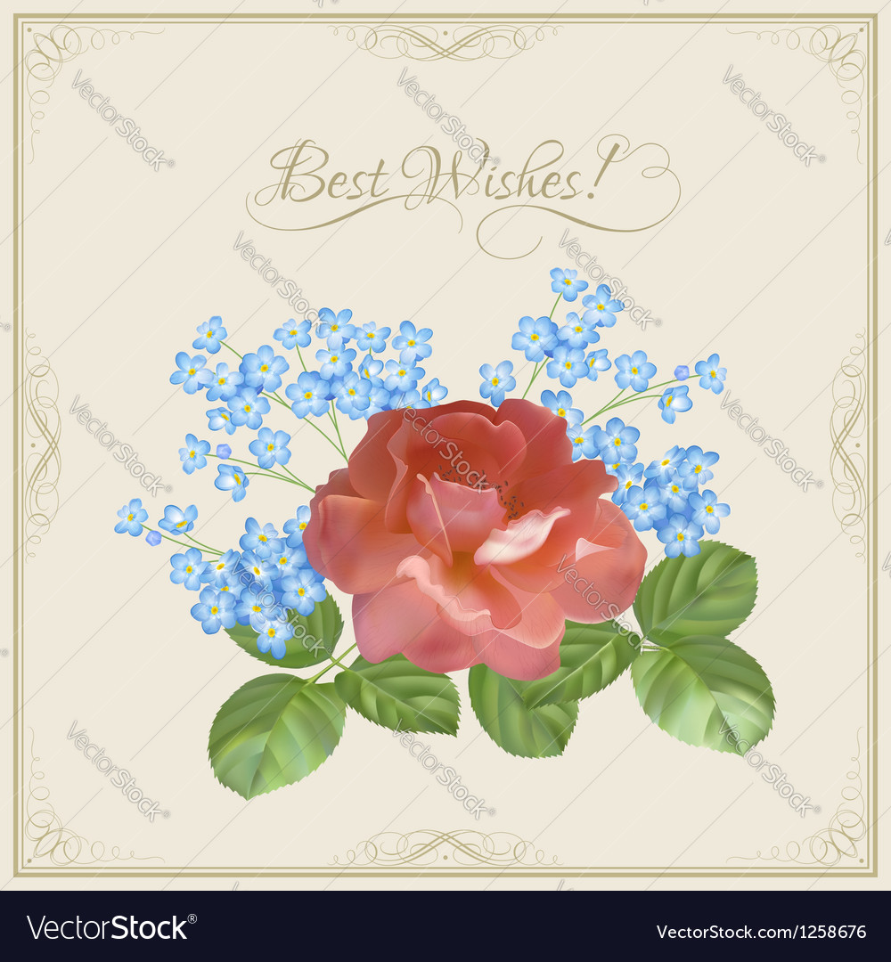 Vintage postcard with flowers decorative frame vector image