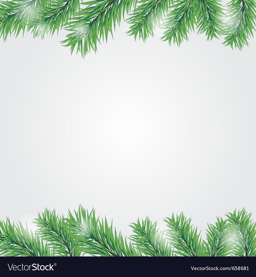 Christmas Branch Vector.Frame With Christmas Tree Branch