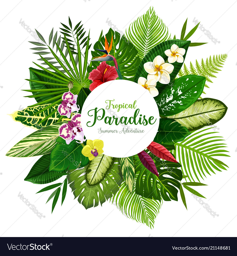 Summer holidays banner of tropical palm and flower