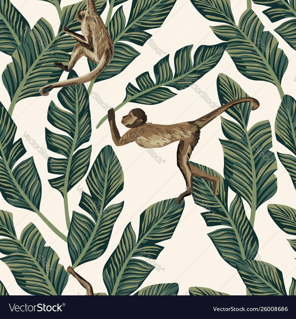 Monkey banana leaves seamless white background