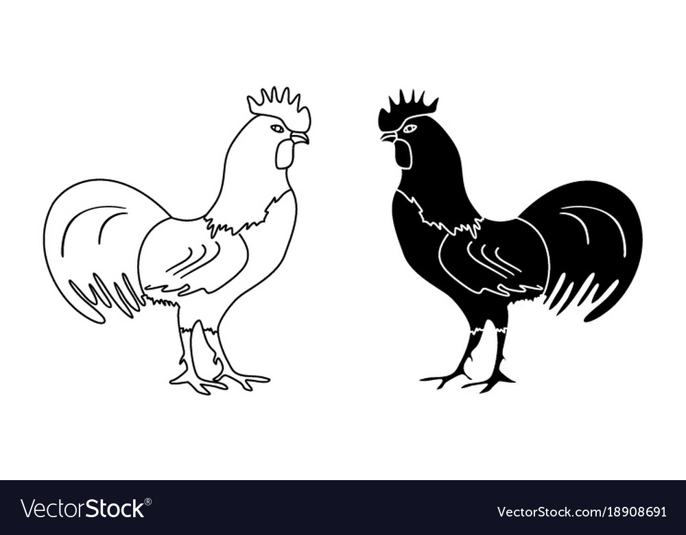 black and white outline drawing of a rooster vector image