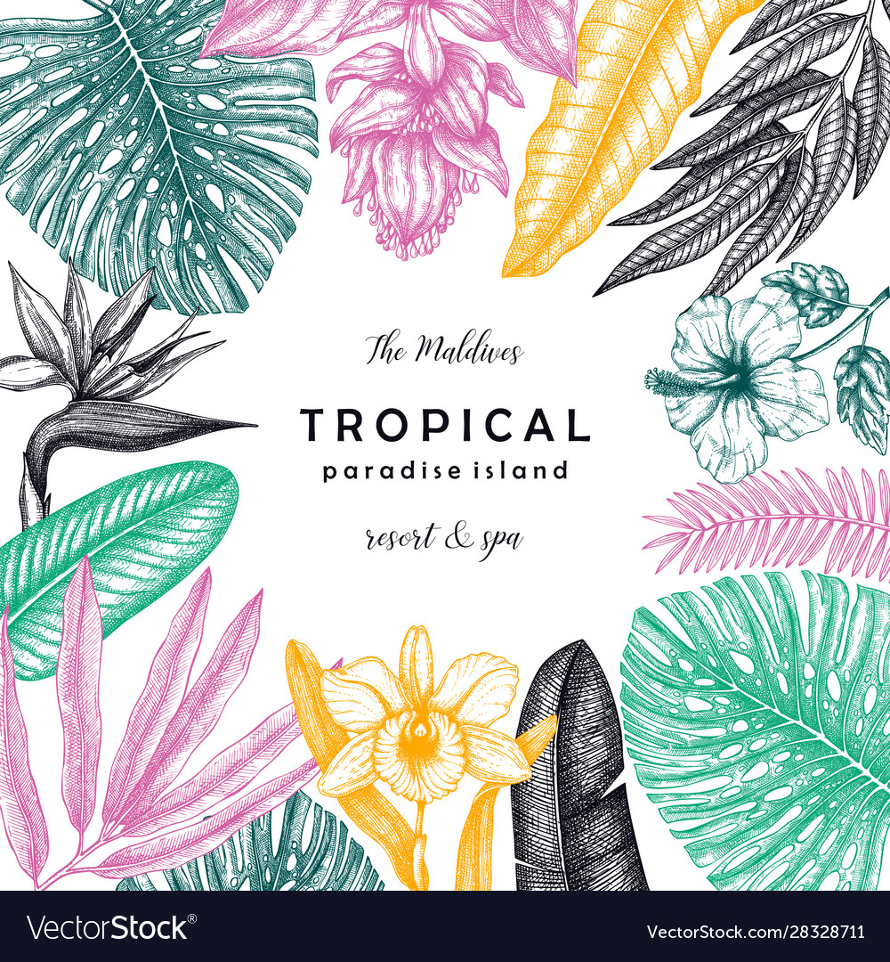 Tropical flowers and leaves frame design hand