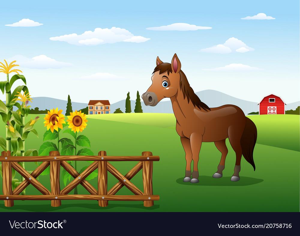 Cartoon brown horse in the farm