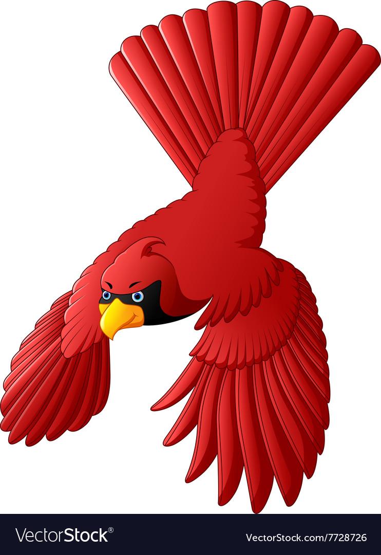 Flying cardinal bird