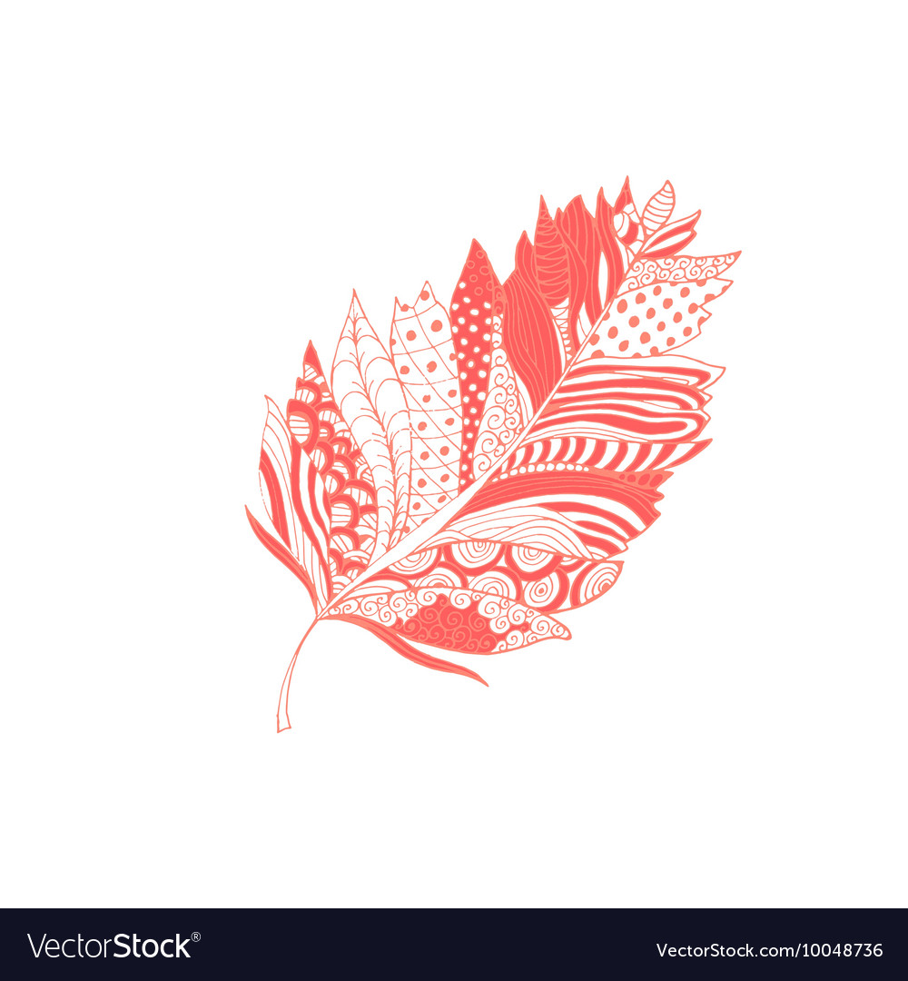 Pink feather with doodle style ornament