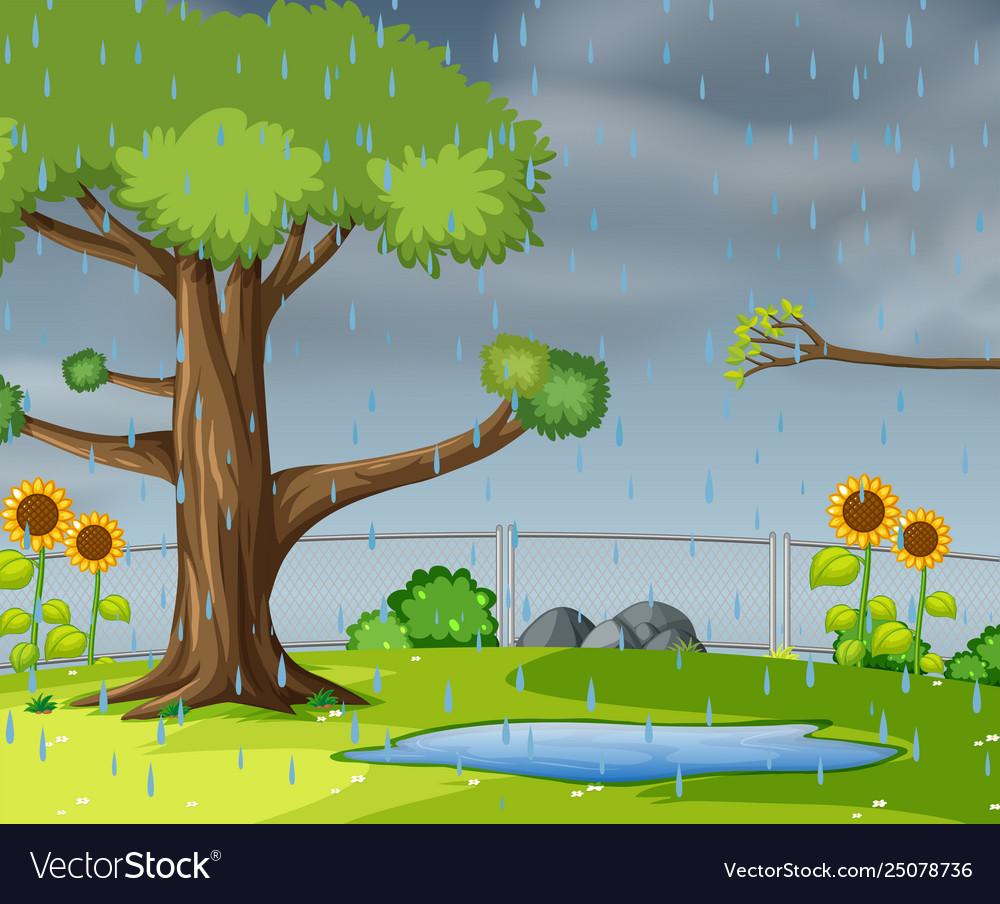 Raining in garden