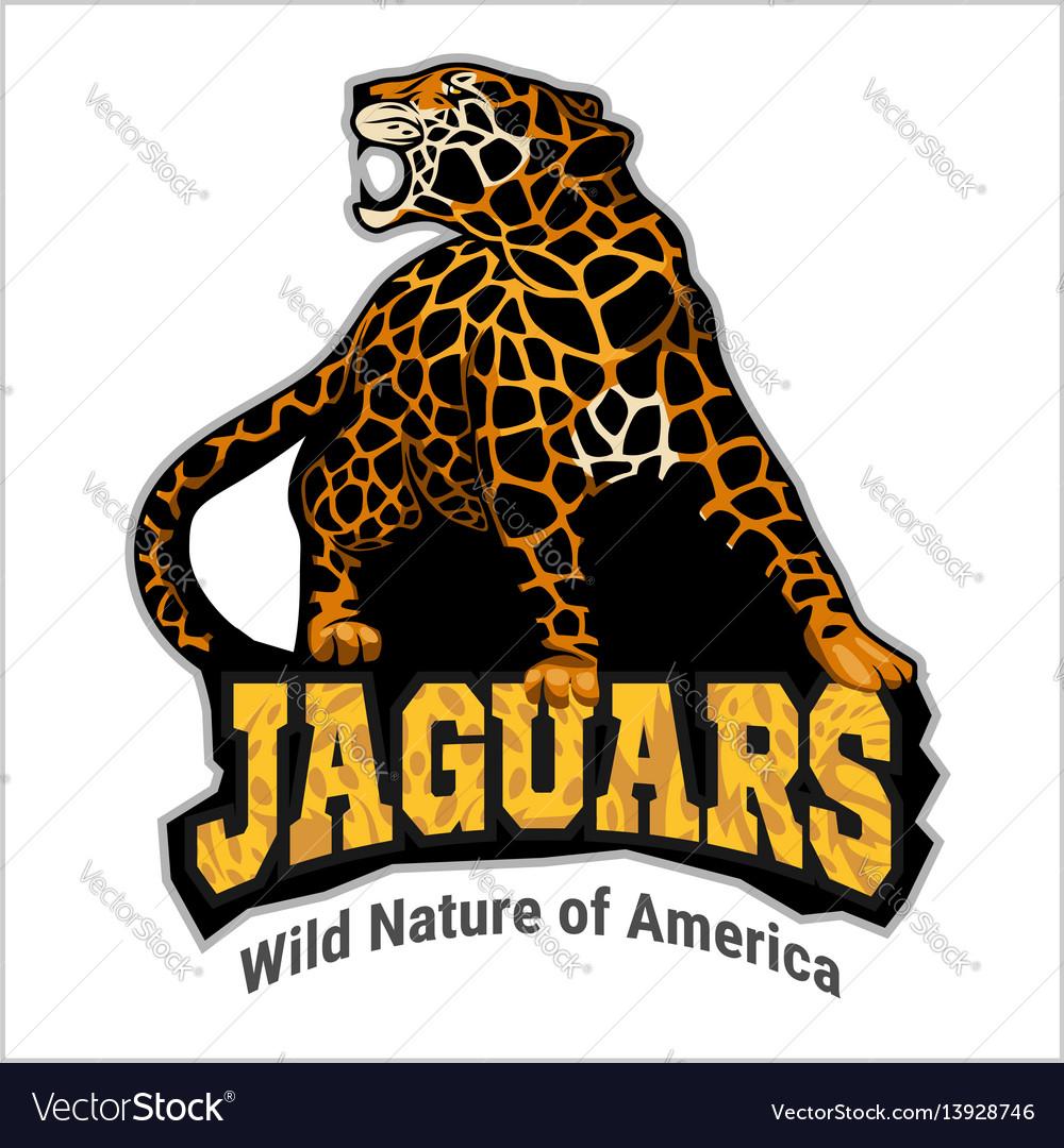 Jaguar Logo Icon Character Royalty Free Vector Image