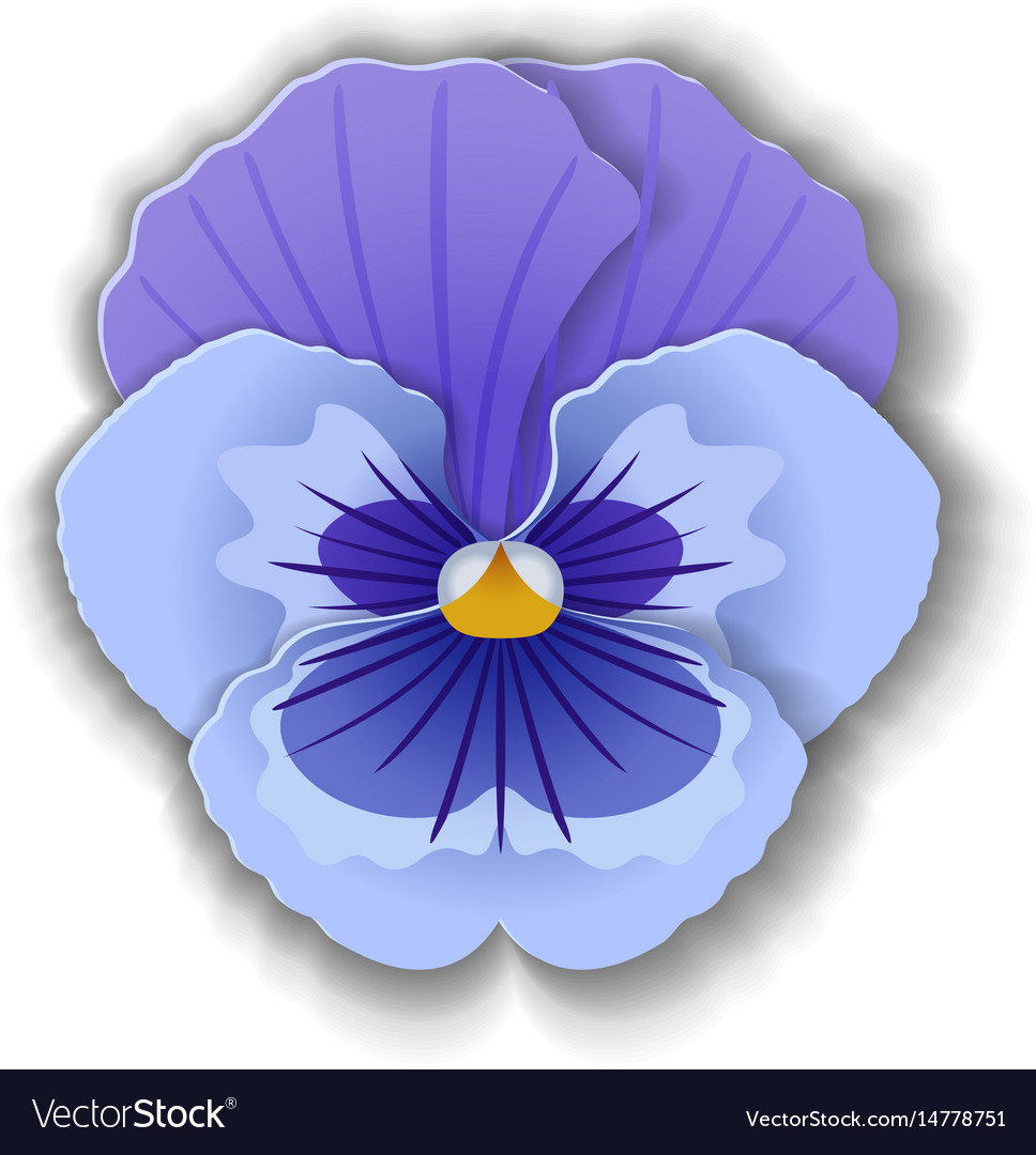 Paper art pansy vector image