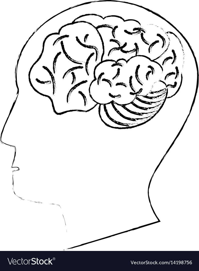 Head Human Brain Thinking Idea Sketch Royalty Free Vector