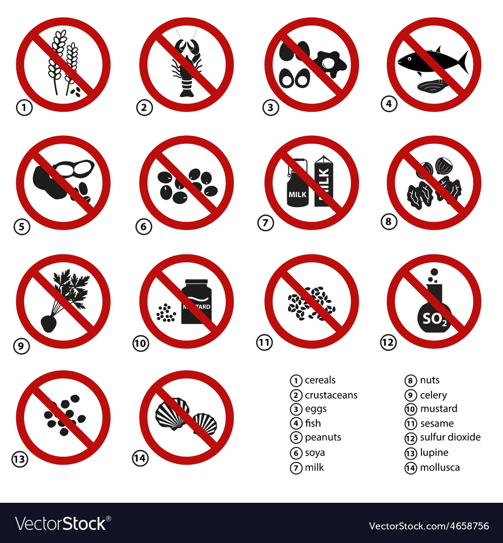 Set of typical food alergens prohibitions for vector image