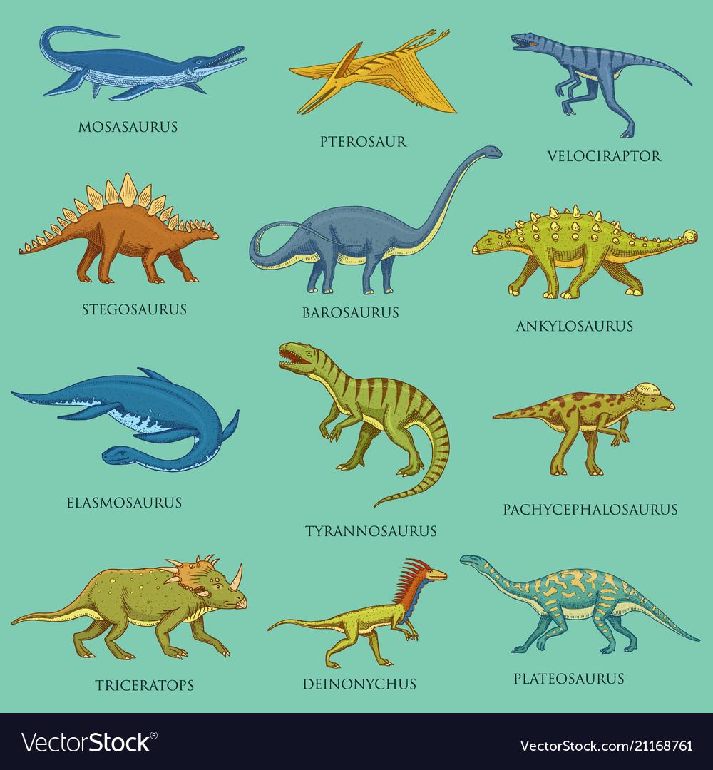 Dinosaurs set jurassic animals prehistoric