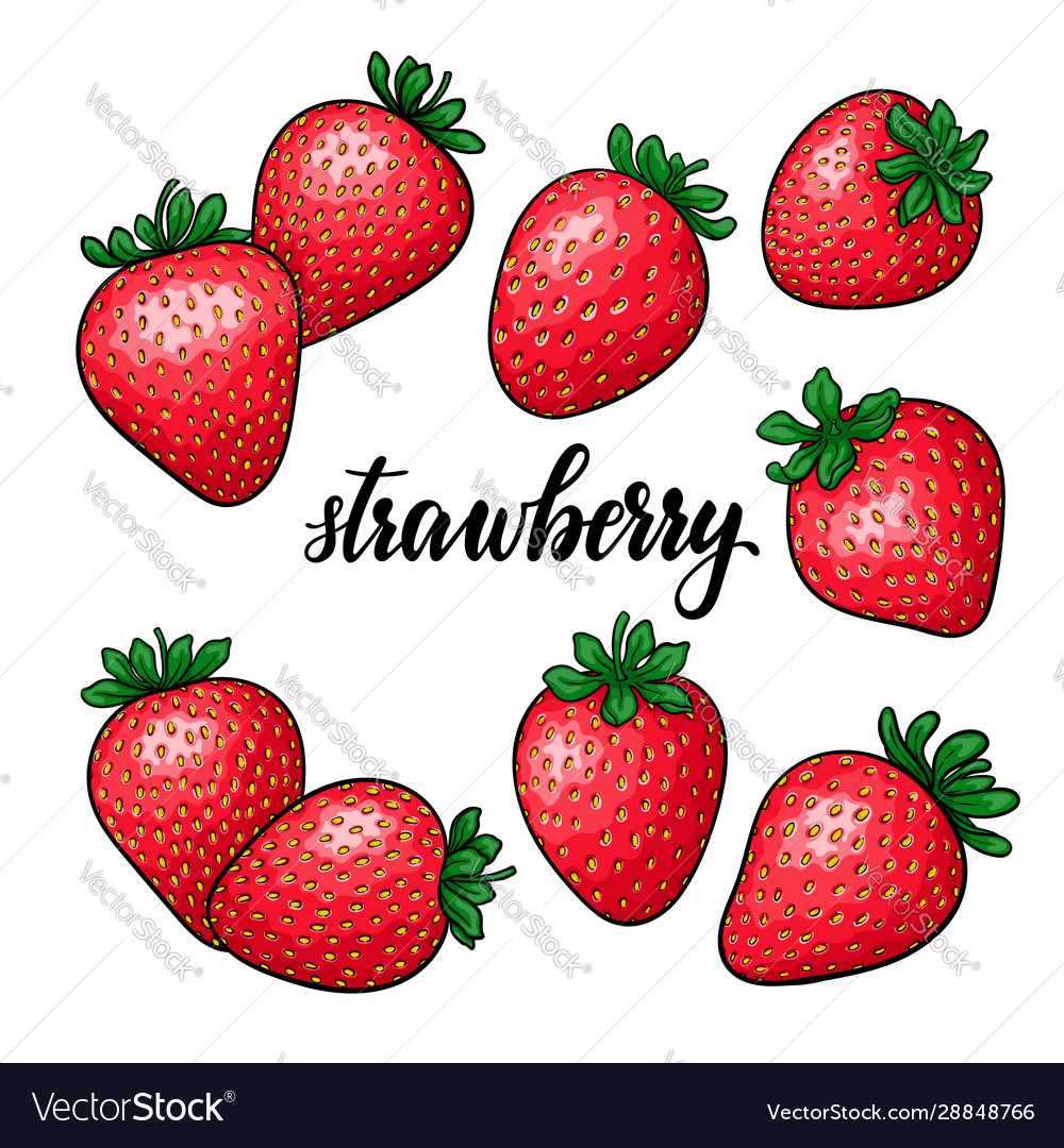 Set beautiful cartoon red strawberry with