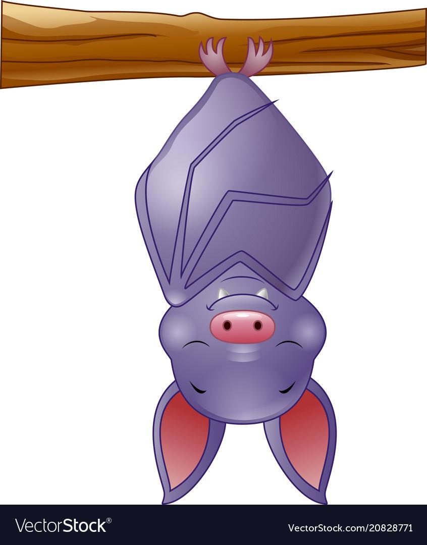 Cute bat cartoon sleeping hanging on tree vector image