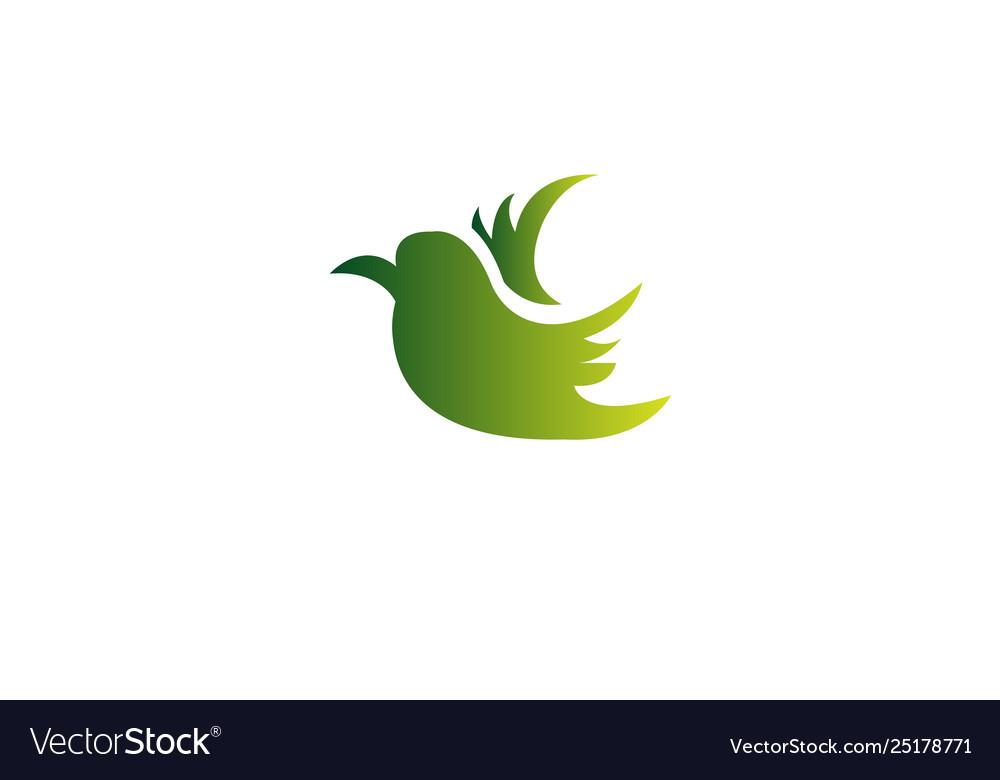 Flying bird abstract logo design vector image