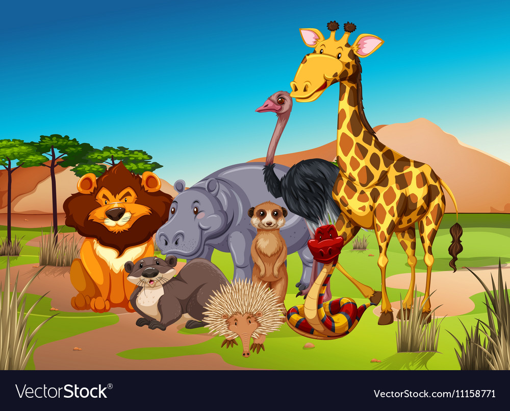 Many animals in the grass field vector image