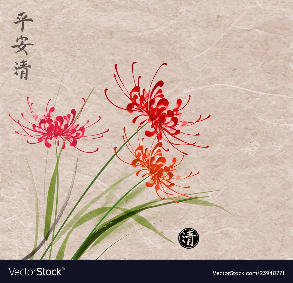 Three red chrysanthemum flowers on vintage paper