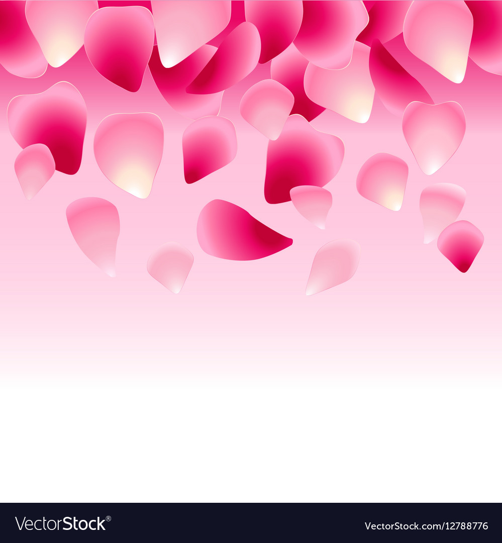 Floral pink background decorated with rose petals