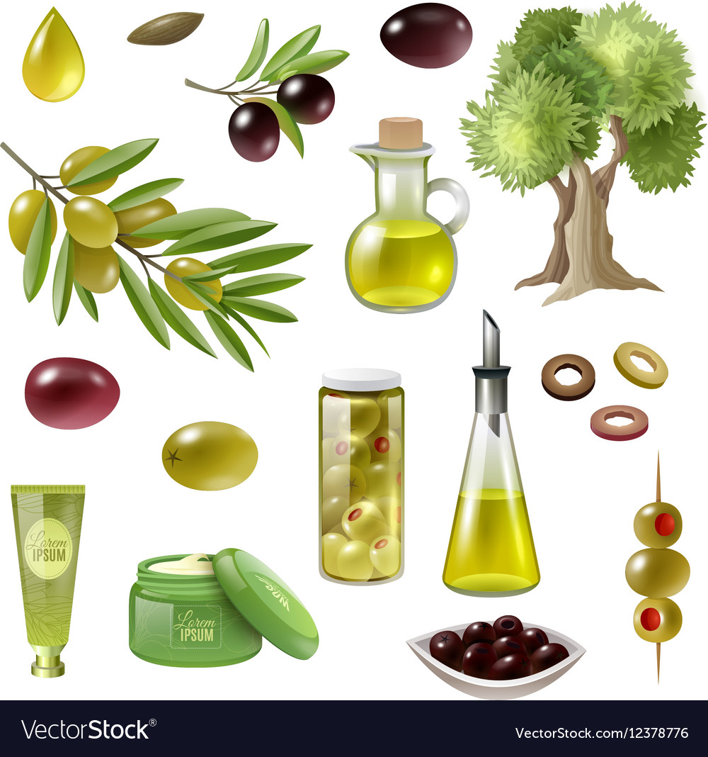 Olive Cartoon Set vector image