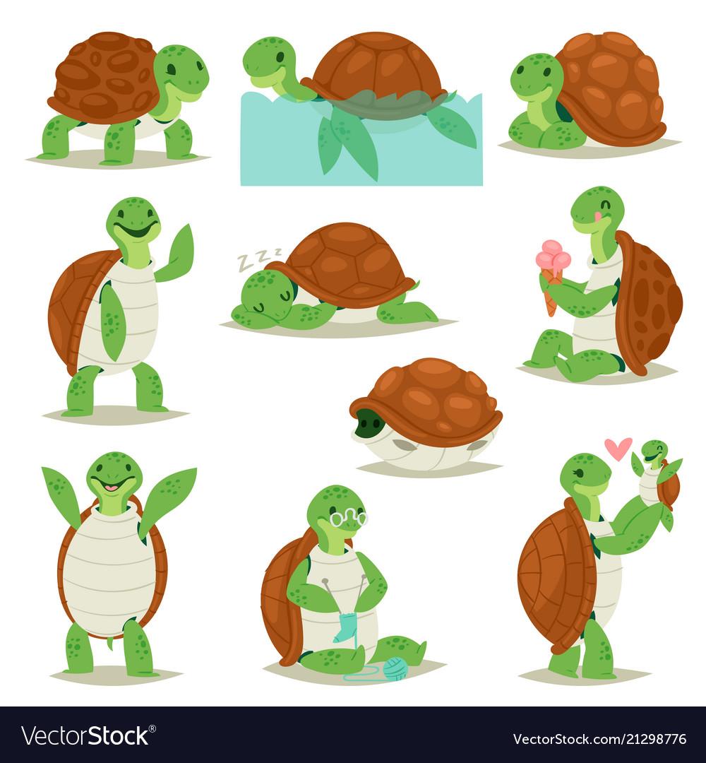Turtle cartoon seaturtle character swimming