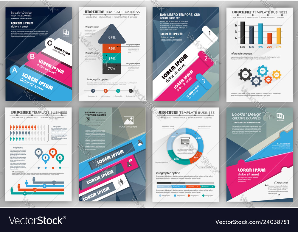 Business brochure template with infographic