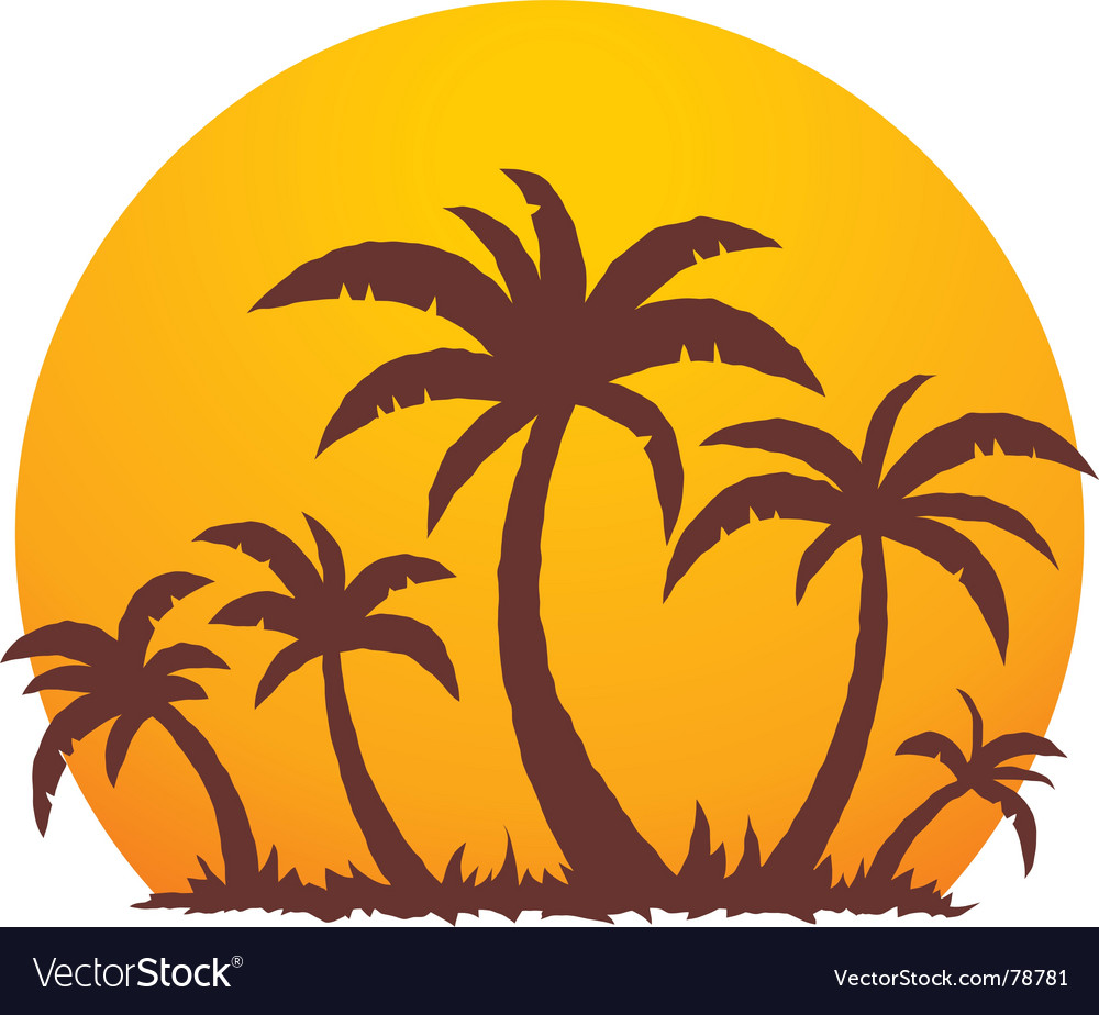 Palm trees and summer sunset