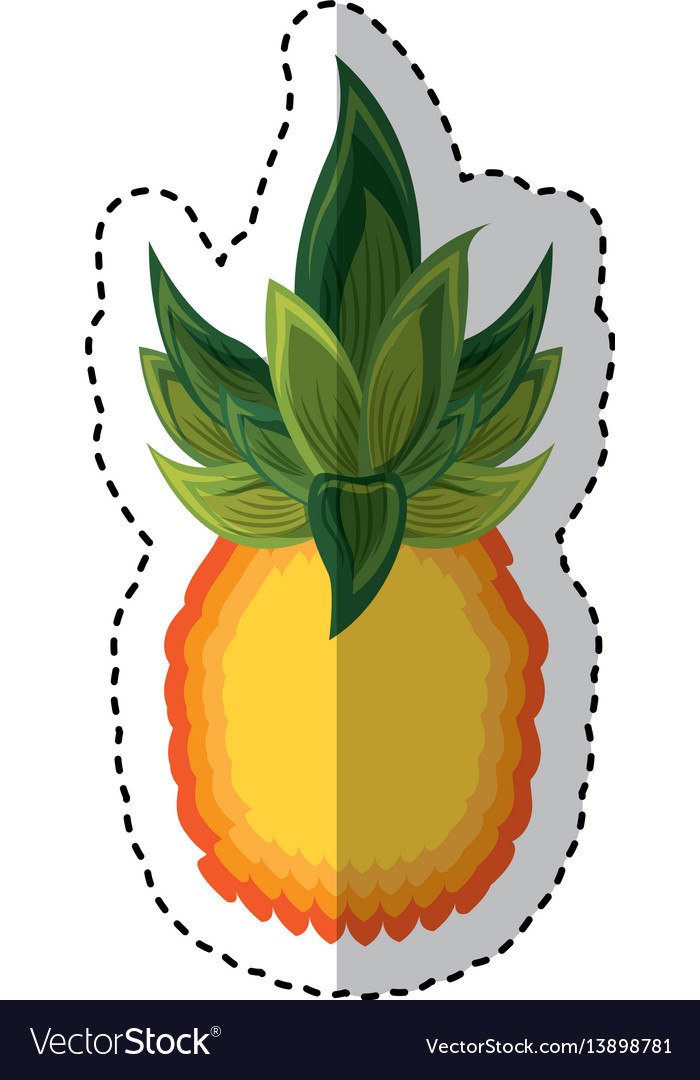 Pineapple exotic fruit icon