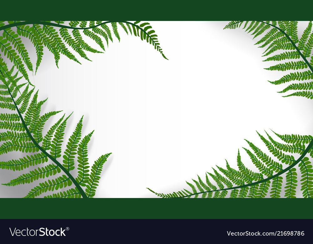 Tropic leaves background with copyspace for text