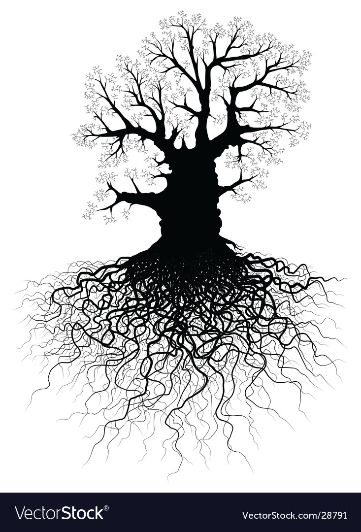 tree roots vector. Tree With Roots Vector