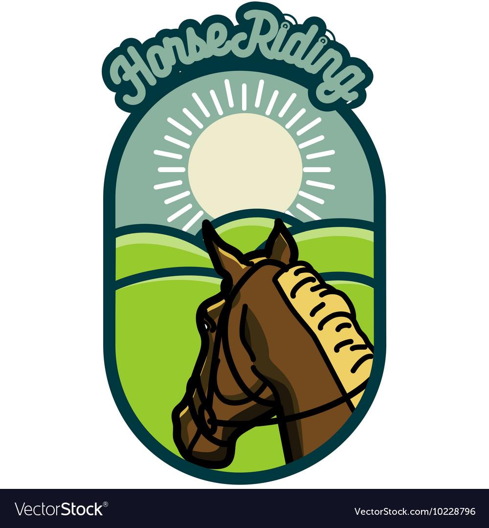 Color Vintage Horse Riding Emblems Vector Image