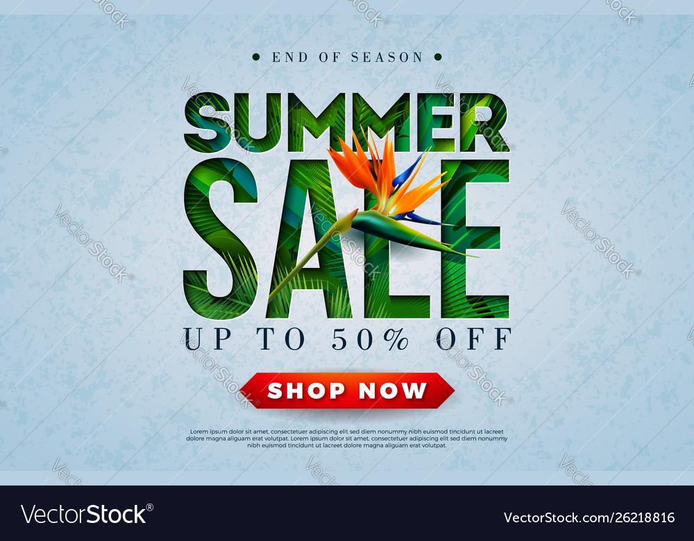 Summer sale design with toucan bird tropical palm