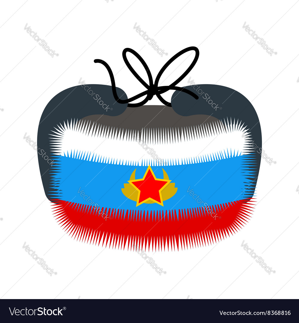 Ushanka Traditional winter hat in Russia Warm Hat vector image