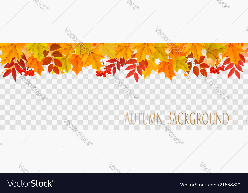 Abstract autumn panorama with colorful leaves on