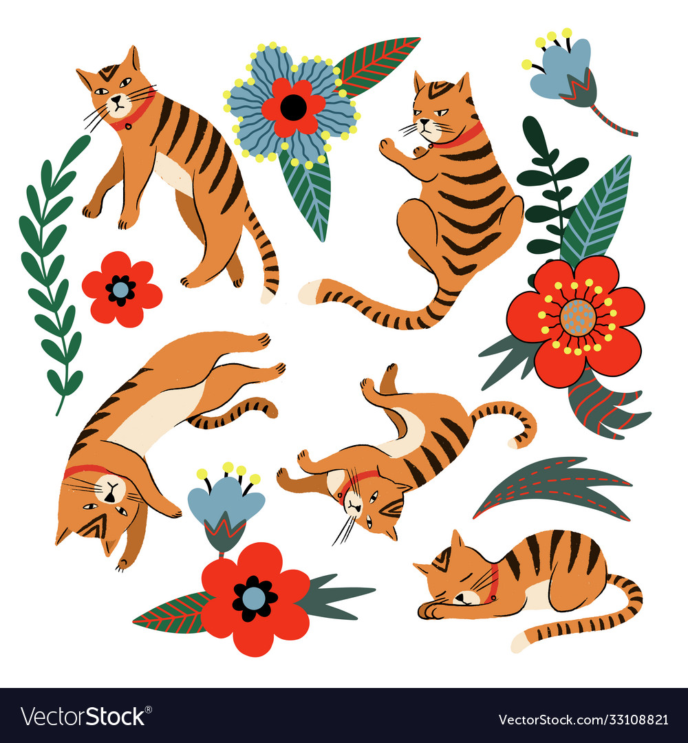 Ginger cats and flowers isolated
