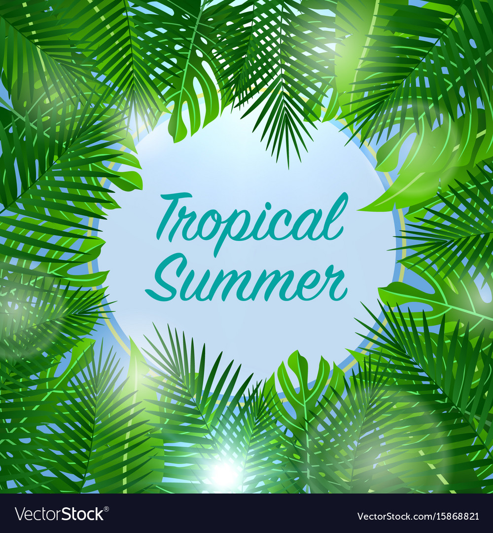 Tropical summer background season vacation