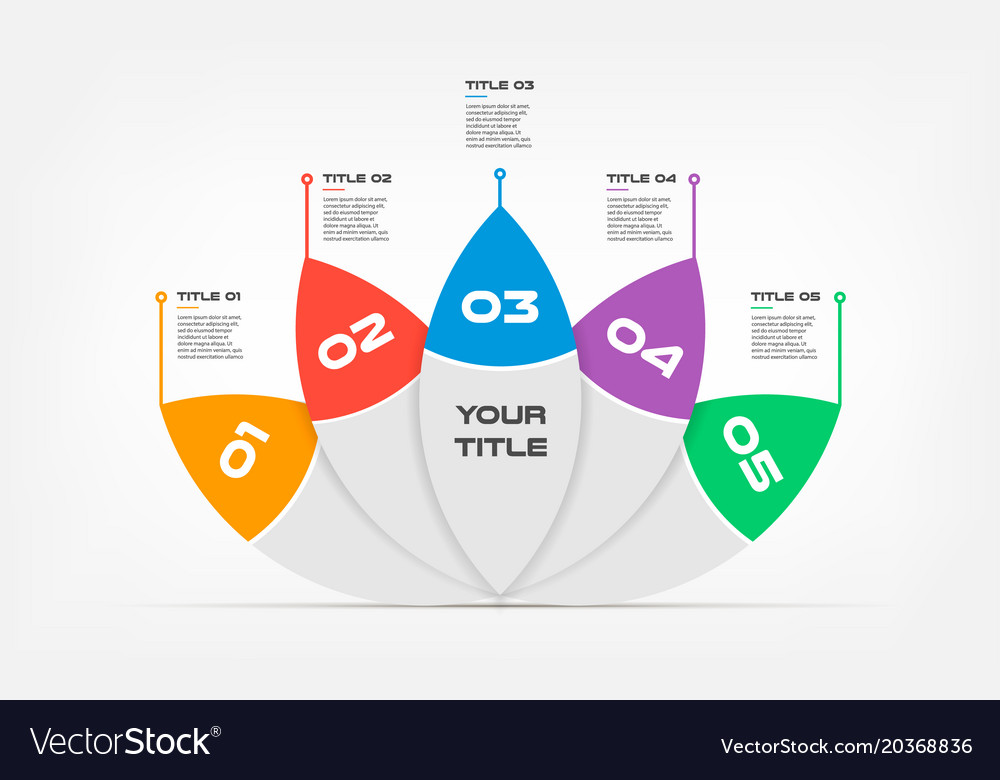 ova lotus text infographic templates for business vector image