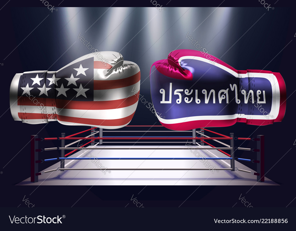 Boxing gloves with prints of the usa and thai