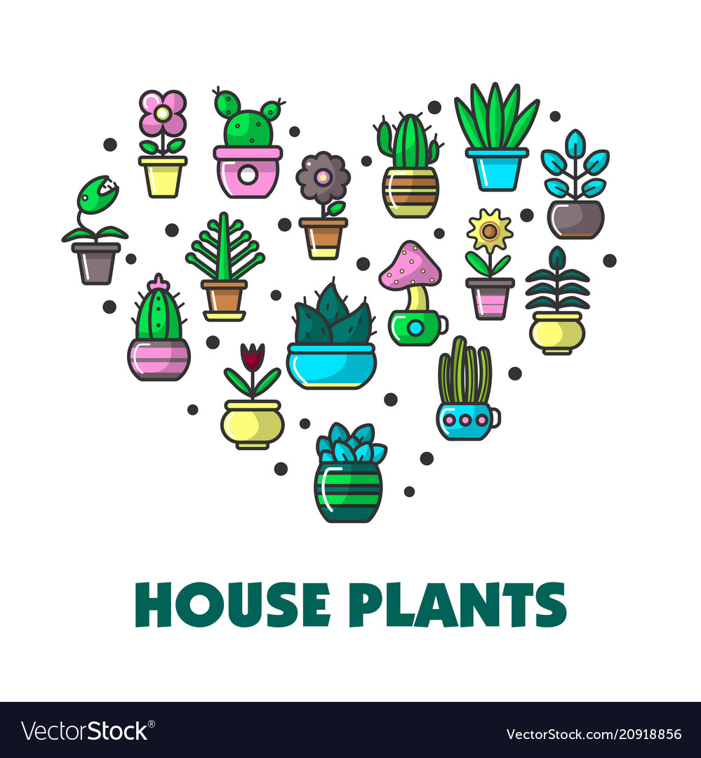 House plants promo poster with potted flowers in