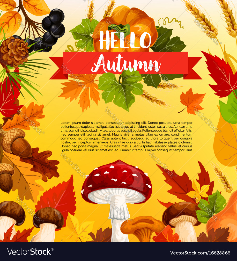 Hello autumn poster template with fall season leaf