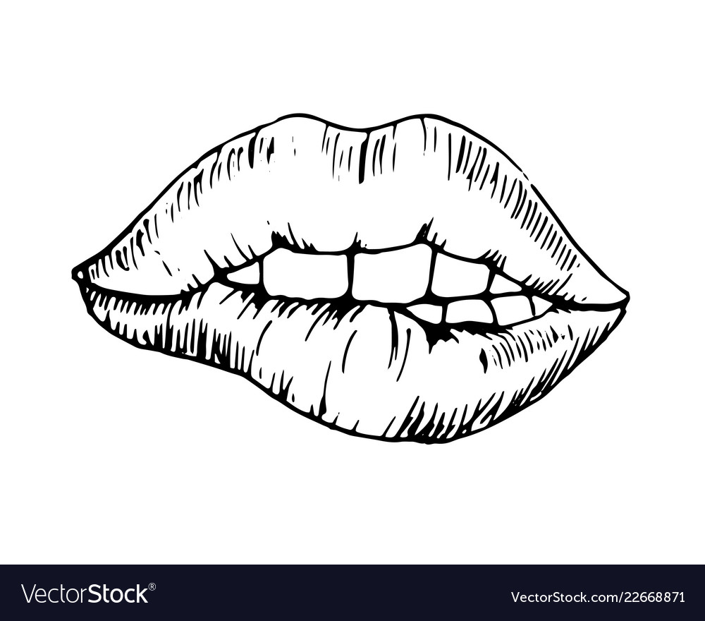 Sketch monochromatic drawing bitten lip vector