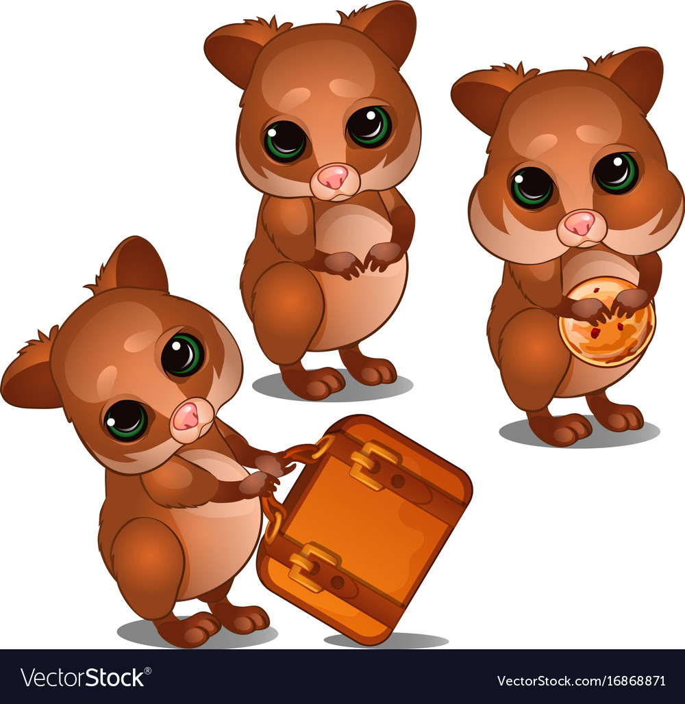 Three hamster with suitcase and biscuits